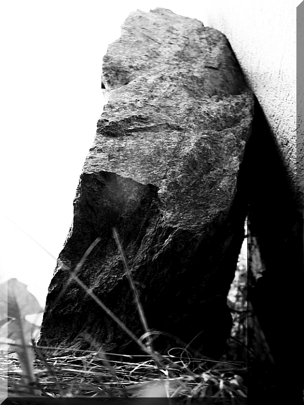 ARCHE-Foto Keltern-Weiler Pendant Grabstein mit bloßen Händen heraushieven