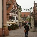 ARCHE-Foto Keltern-Weiler Ettlingen Nicht nur zur Weihnachtszeit_06