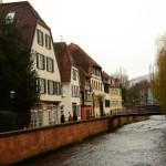 ARCHE-Foto Keltern-Weiler Ettlingen Nicht nur zur Weihnachtszeit_13