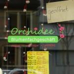 ARCHE-Foto Keltern-Weiler Ettlingen Nicht nur zur Weihnachtszeit_35