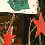 ARCHE-Foto Keltern-Weiler Ettlingen Nicht nur zur Weihnachtszeit_42