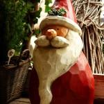 ARCHE-Foto Keltern-Weiler Ettlingen Nicht nur zur Weihnachtszeit_43