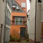 ARCHE-Foto Keltern-Weiler Ettlingen Nicht nur zur Weihnachtszeit_49
