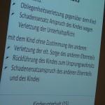 Vortrag von Manfred Herrmann.
