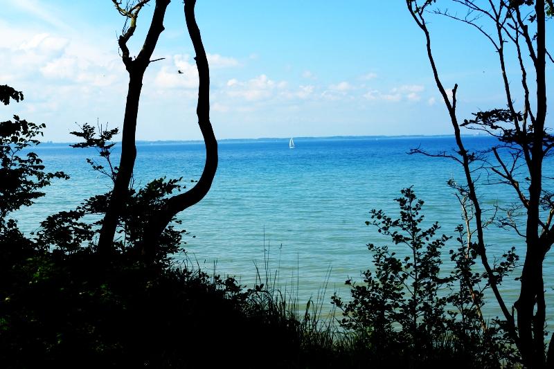 Die Fehler überwinden und verzeihen. Komm' mit mir ans Meer. Den Beginn der Liebe leben.