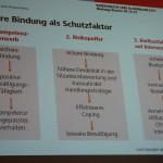 ARCHE-Foto Keltern-Weiler Regensburg Bindungsverhalten 11. Symposium Europäisches Familienrecht_11