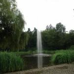 ARCHE Weiler Kurpark Waldbronn Liebe und Hass_00