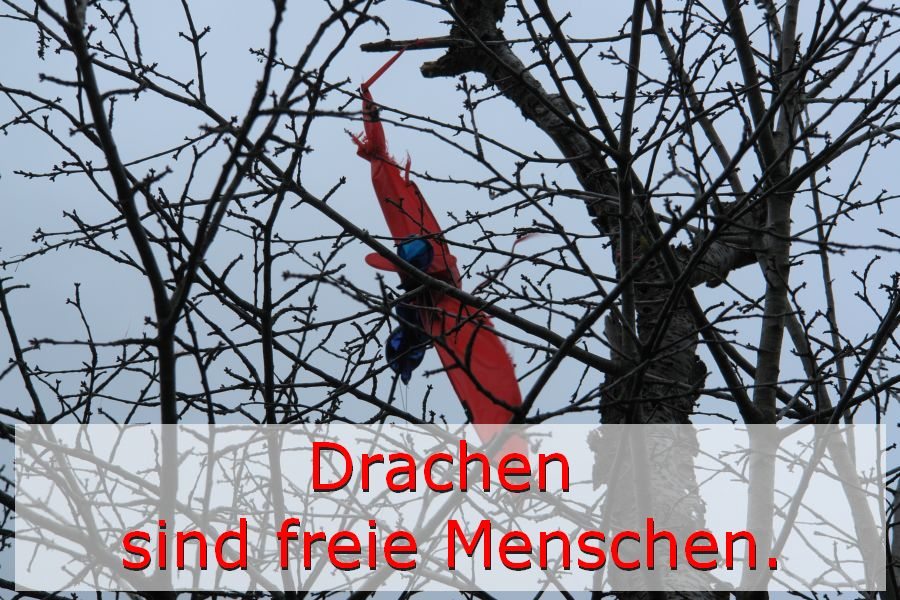 ARCHE Weiler Der Drache und der Spaziergänger_01f