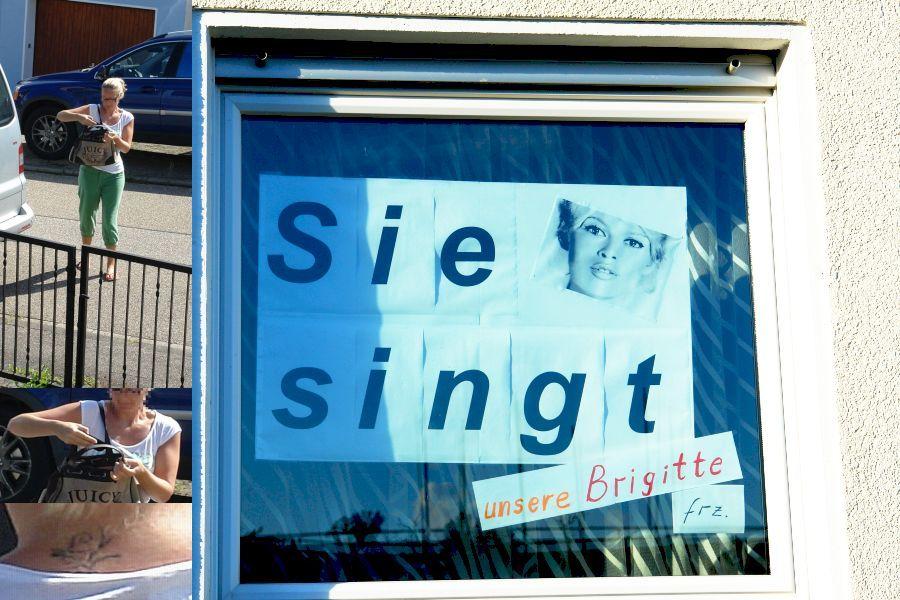 """Handelt es sich um dieses Plakat und um die dummfreche Paparazzi, die behauptete """"Sie singt"""" würde verleumdet ?"""