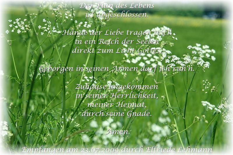 Der Plan des Lebens. Von Elfriede Lehmann.