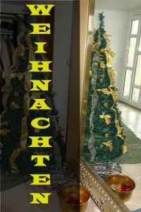 arche-sonnenhaus-weihnachten-zuhause_00b