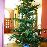 arche-weihnachten-amtsgericht-giessen_00