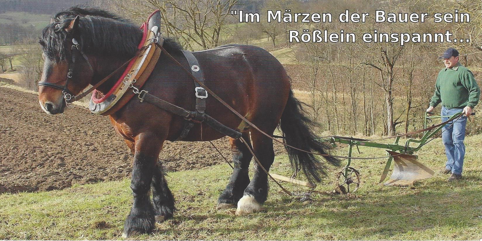 2017-03-25_Sc_HistorischesSchaupflügen2017_01
