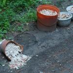 ARCHE Wilde Müllablagerung im Wald_00