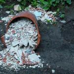 ARCHE Wilde Müllablagerung im Wald_01