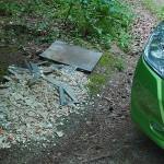 ARCHE Wilde Müllablagerung im Wald_02