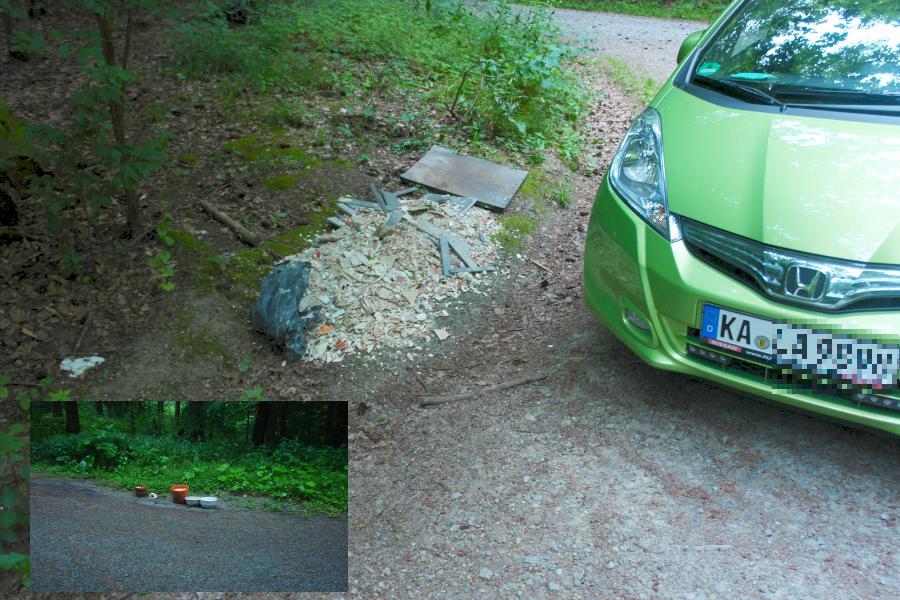 ARCHE Wilde Müllablagerung im Wald_07