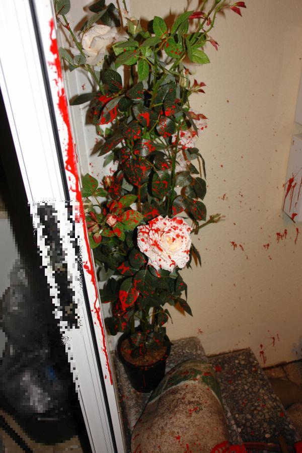 ARCHE Farbbeutel-Anschlag auf ARCHE_03a