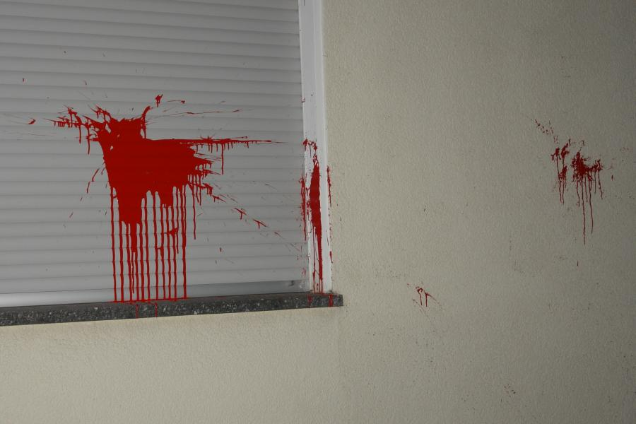ARCHE Farbbeutel-Anschlag auf ARCHE_08a