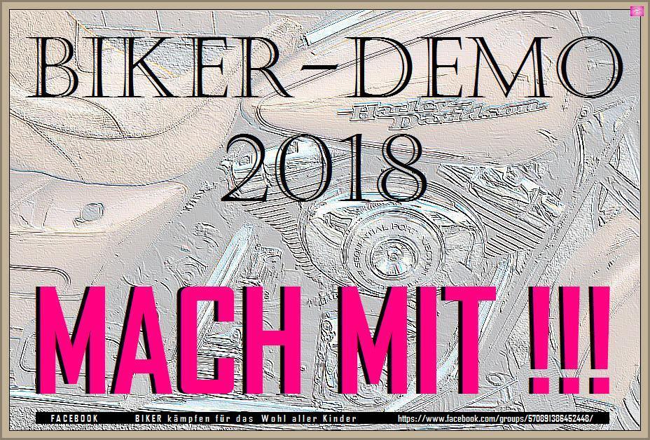 ARCHE BIKER-DEMO 2018 WELTWEIT_02c