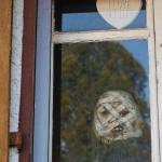 ARCHE Halloween Reformation ALLER SEELEN_50