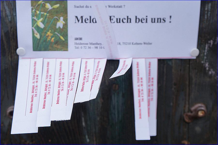 ARCHE Landwirtschaftsliches Projekt Keltern-Weiler_24a